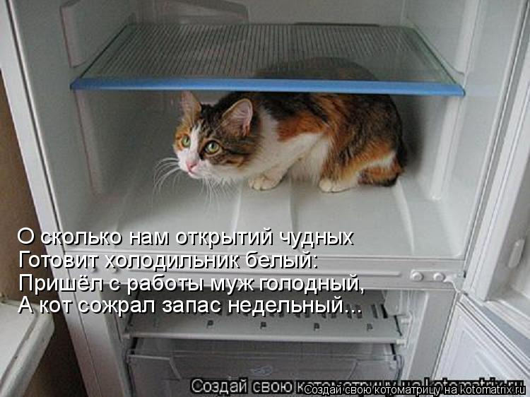 http://forums.drom.ru/attachment.php?attachmentid=1107641&stc=1&d=1278830243