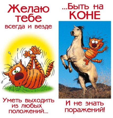 http://forums.drom.ru/attachment.php?attachmentid=4750638&d=1414117746