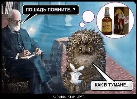 https://forums.drom.ru/attachment.php?attachmentid=6920459&d=1545882643&thumb=1