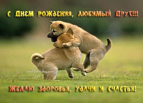 http://forums.drom.ru/attachment.php?attachmentid=848223&stc=1&d=1265360417